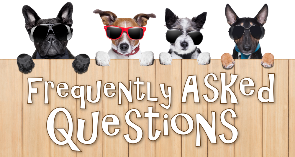 Dog FAQ from Animals In Pursuit